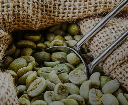 פולי קפה ירוק לבחירה