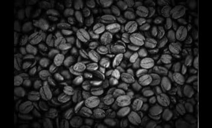 הדרך הטובה ביותר לבשל קפה